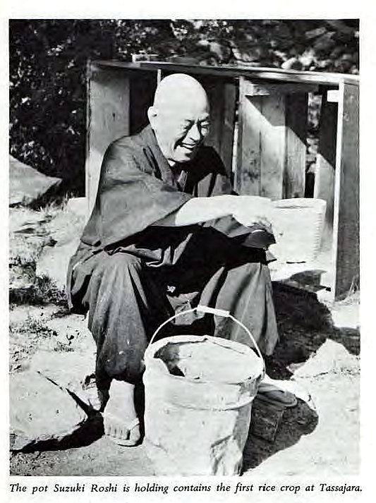 Machine generated alternative text: The pot Suzuki Roshi is holding contains the first rice crop at Tassajara.